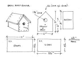 basic-birdhouse.jpg